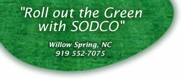 Roll out the Green with SODCO - Willow Spring, North Carolina. Call 919 552-7075